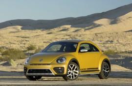 beetle-dune_004_880x500