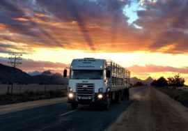 sharing roads with trucks sunset