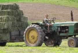 tractor-kid